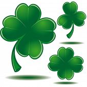 Vector clover leaf - Symbol of Saint Patrick's day