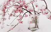 foto of flower arrangement  - branches of cherry blossoms covered in snow - JPG