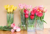 vases of colorful tulips on taupe background