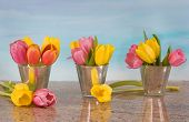 foto of flower arrangement  - tulips in vases on blue watercolor background with granite countertop - JPG
