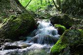 Paisagem com Cachoeira na floresta foi filmada com longa exposição