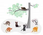Cats In The Spring Fighting For The Right To Marry A Female. Kitty Watching Them From The Tree. Flat poster