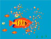 Fish background.