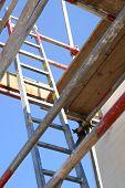 Ladder & Scaffold