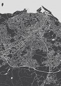 Monochrome Detailed Plan City Of Edinburgh Detailed Plan Of The City, Rivers And Streets poster
