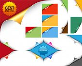 Vector paper with colored curl  for your design, website, application, presentation, or ...