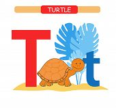 Letter T And Funny Cartoon Turtle. Animals Alphabet A-z. Cute Zoo Alphabet In Vector For Kids Learni poster
