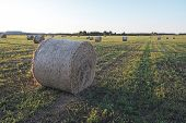 Bale Of Hay On The Field In The Form Of A Twisted Roll Top View, The Horizon Of The Field On The Bac poster