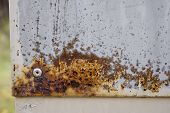 Nice Grungy Rust Stain On Metal. Stock Photo