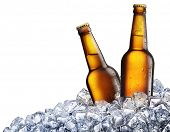 Two bottles of beer on ice. Isolated on white background.
