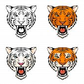 line illustration of a roaring tiger head