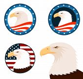 illustration of american bald eagle with american flag background