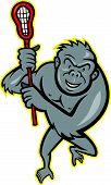 Gorilla Ape With Laccrosse Stick Cartoon