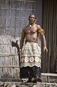 Fiji Chief