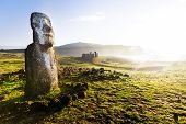 Standing Moai in sunshine in Easter Island