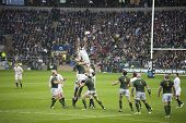 TWICKENHAM LONDON - NOVEMBER 23: Geoff Parling Jumps for ball at England vs South Africa, England pl