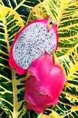 Red Dragon Fruit Or Pitaya