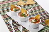 Tortilla-chipotle Soup