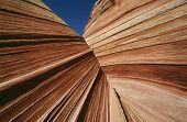 USA Arizona Paria Canyon-Vermilion Cliffs Wilderness sandstone rock formations close up