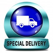 special delivery shipping web shop package online internet order from webshop blue metal  icon or bu