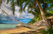 stock photo of heavens gate  - Hammock hanging between palm trees in a tropical paradise  - JPG