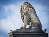Lion Of Constance