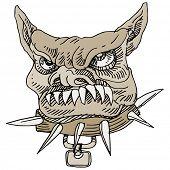 An image of a vicious bulldog.