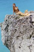 mermaid on the rock
