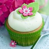 Cupcake decorated with a pink and white sugar flower