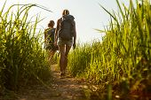 Two hikers walking through green lush meadow at sunny day