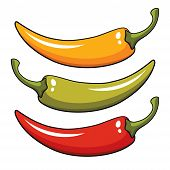 stock photo of cayenne pepper  - Vector illustration of pepper in three colors - JPG