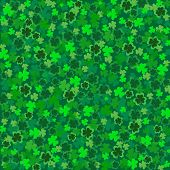 St Patricks-Clover Background