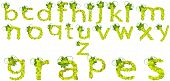 Letters-Green Grapes Lower Case