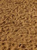 Footprints in Kauai