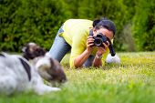 Young photographer taking a photo of playing dogs
