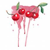 Watercolor cherry on the dripping background