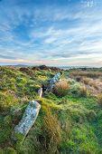 Standing Stones On Bodmin Moor