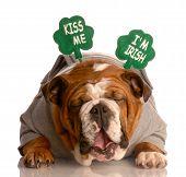 Kiss Me Im Irish Bulldog
