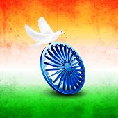 Beautiful white pigeons sitting on Asoka Wheel on national tricolors grungy background for 15th of A