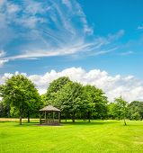 Green Park Trees Over Blue Sky