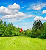 Golf Field. Green Grass And Blue Sky