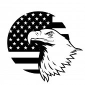 American eagle against USA flag background.