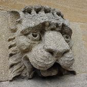 Carved Lion Gargoyle