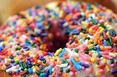 Sugar Sprinkle