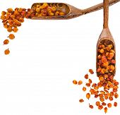 picture of sea-buckthorn  - Border frame of Dried sea buckthorn berries in a wooden scoop  - JPG