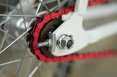 lose up on a bicycle rear tire chain and gears.