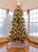 Beautiful Xmas Tree With Snow Outside