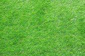 Background Artificial Grass