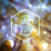 Corporate website design. Carpe Diem