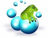 Frog On Balls